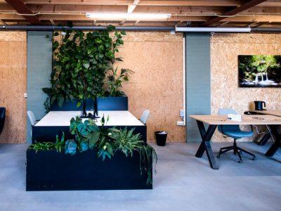 Groen voor je gezond kantoor